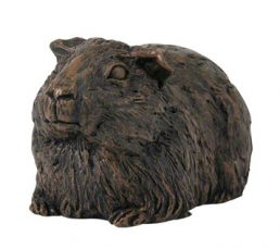 guinea-pig-cast
