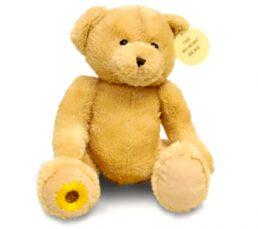 Memory-Bear