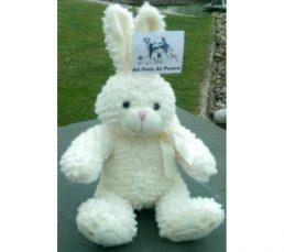 Memory-Bunny