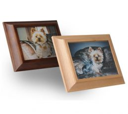 Picture-Frame